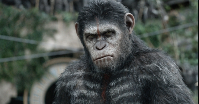 Dawn of the Apes