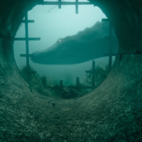 'Crawl': Draining the Superhero Swamp